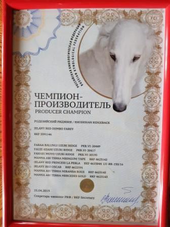 Фарей Чемпион производитель